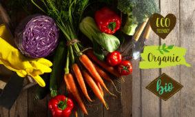 Verduras y hortalizas ecologicas